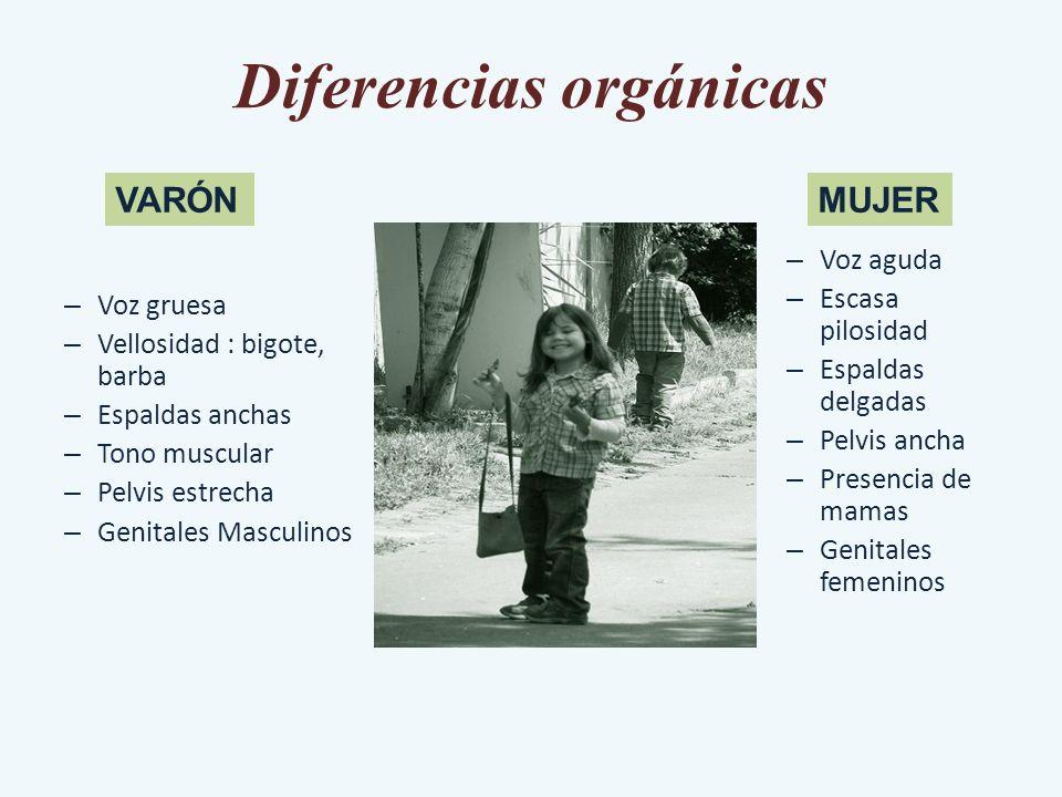 Diferencias orgánicas