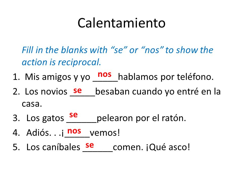 Calentamiento Fill in the blanks with se or nos to show the action is reciprocal. 1. Mis amigos y yo _____hablamos por teléfono.