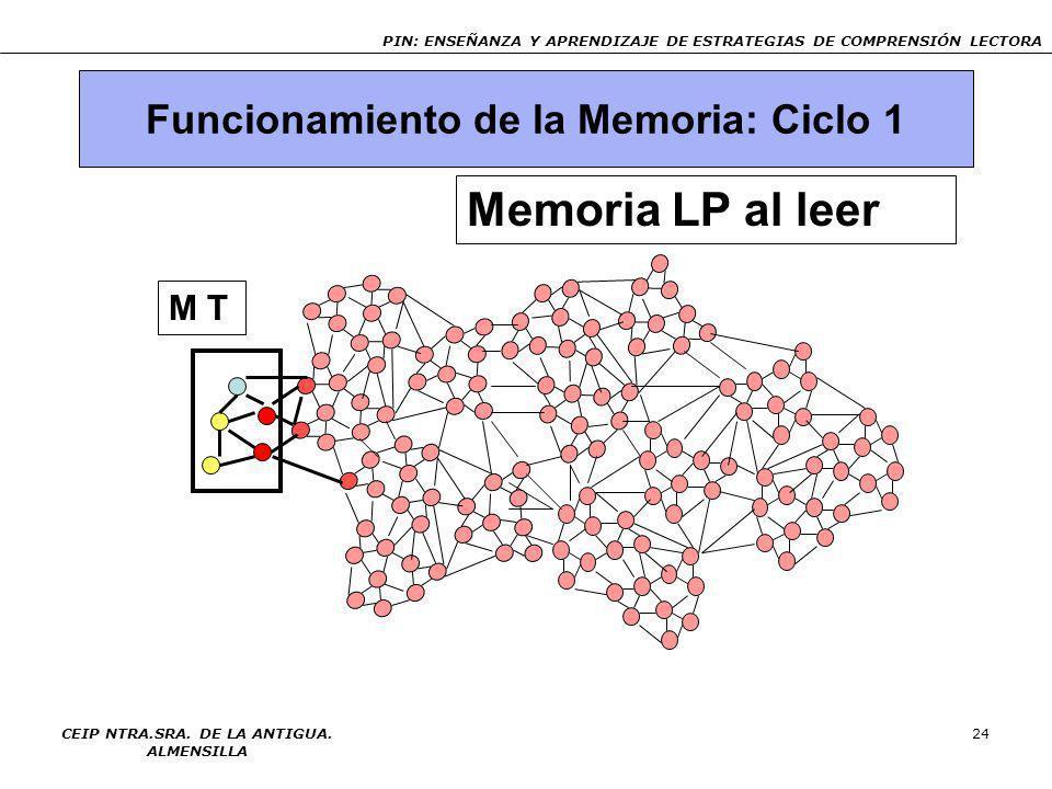 Memoria LP al leer Funcionamiento de la Memoria: Ciclo 1 M T