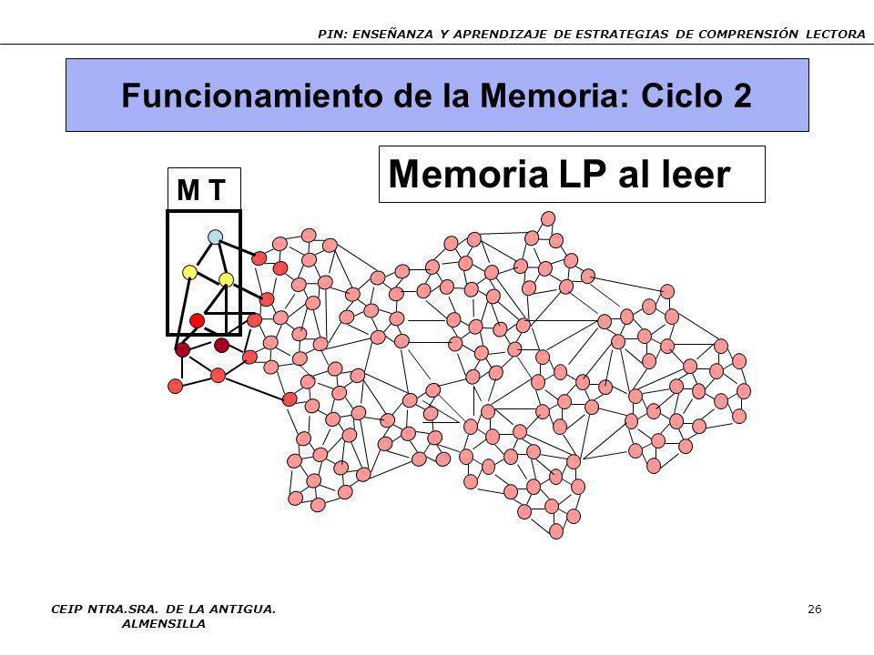 Memoria LP al leer Funcionamiento de la Memoria: Ciclo 2 M T