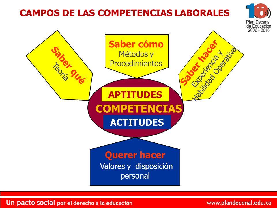 CAMPOS DE LAS COMPETENCIAS LABORALES