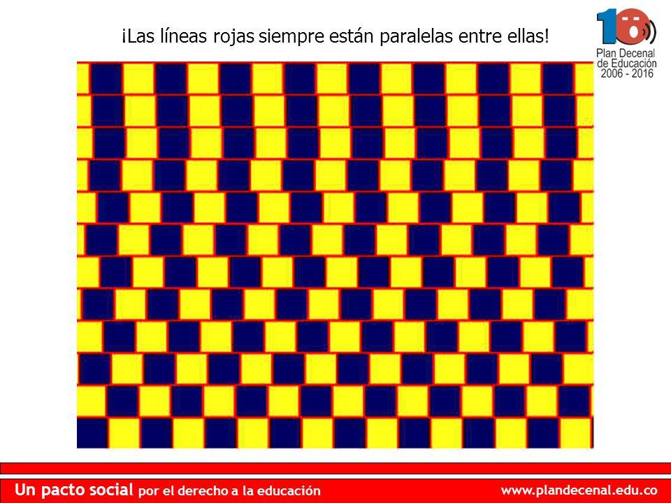 ¡Las líneas rojas siempre están paralelas entre ellas!