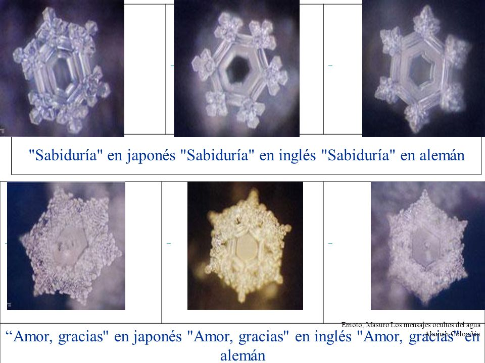 Sabiduría en japonés Sabiduría en inglés Sabiduría en alemán
