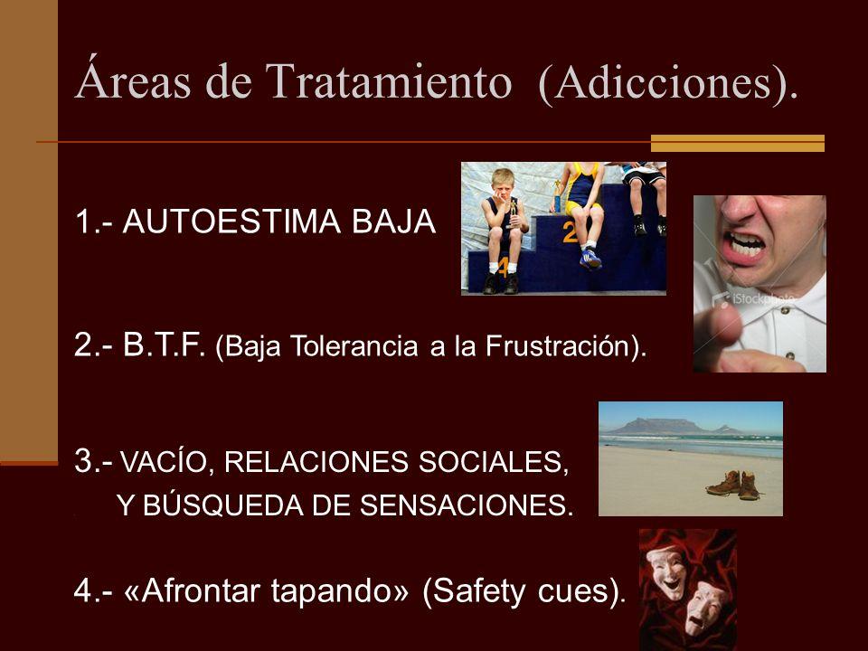 Áreas de Tratamiento (Adicciones).