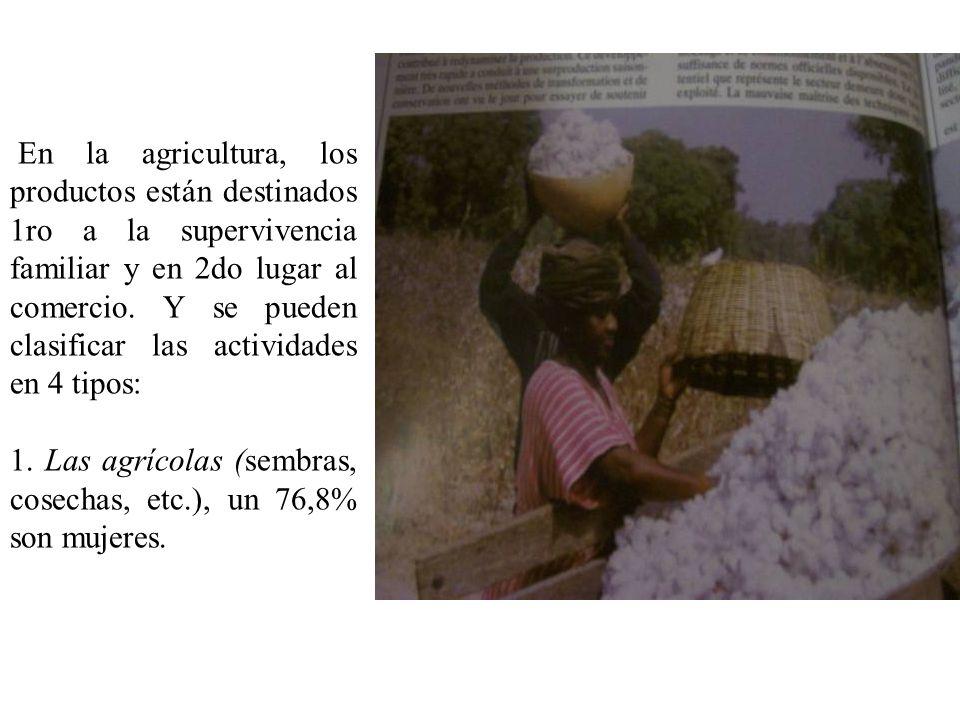 En la agricultura, los productos están destinados 1ro a la supervivencia familiar y en 2do lugar al comercio. Y se pueden clasificar las actividades en 4 tipos:
