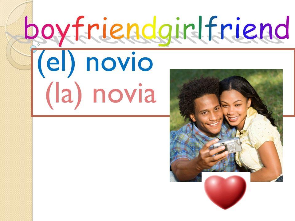 boyfriendgirlfriend (el) novio (la) novia