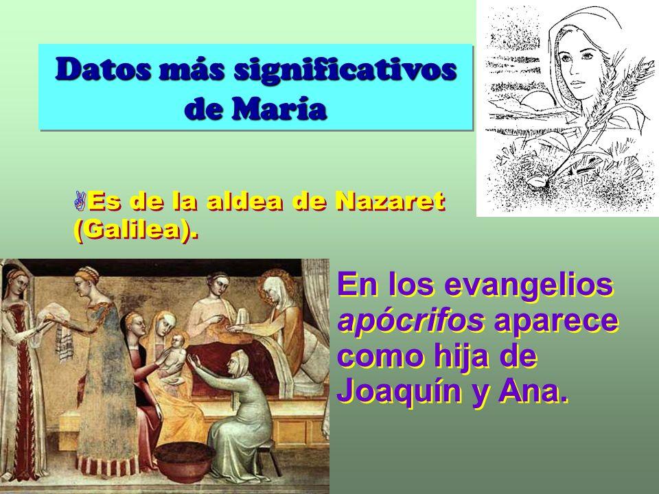 Datos más significativos de María