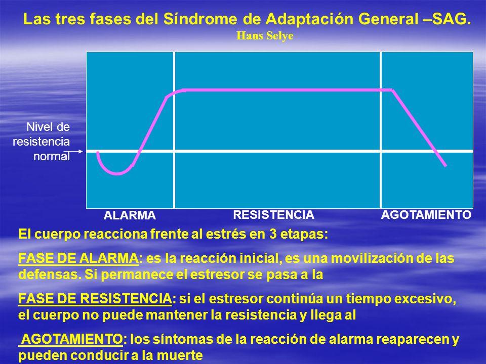 Las tres fases del Síndrome de Adaptación General –SAG.