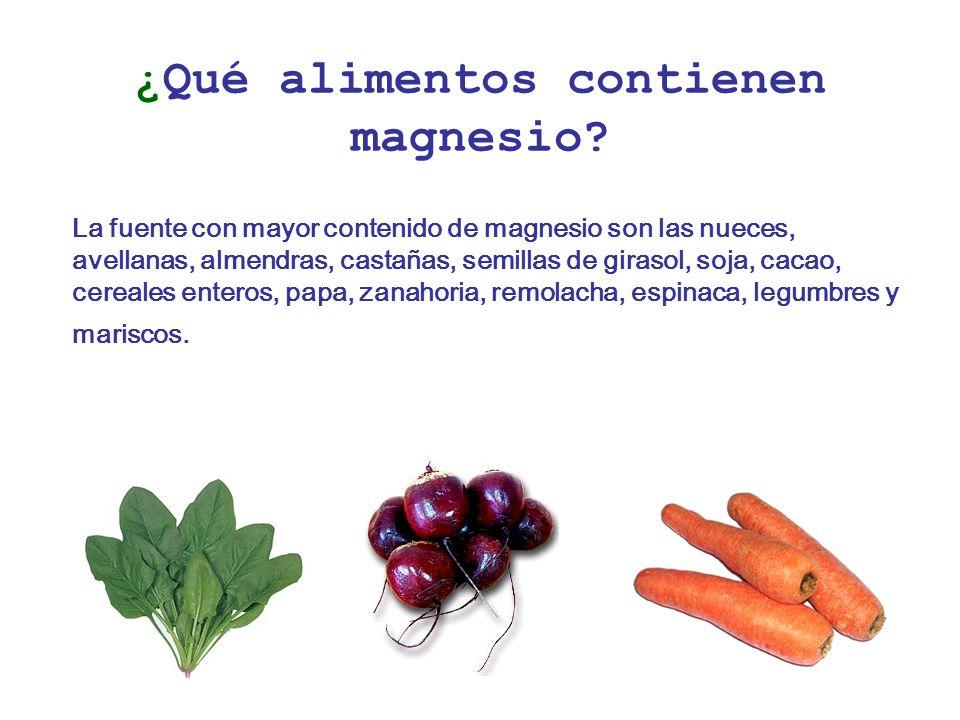 ¿Qué alimentos contienen magnesio