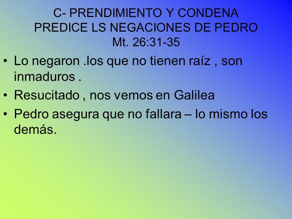 C- PRENDIMIENTO Y CONDENA PREDICE LS NEGACIONES DE PEDRO Mt. 26:31-35