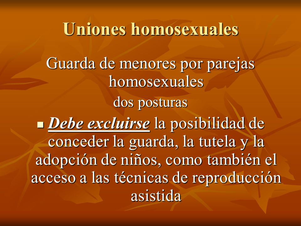 Guarda de menores por parejas homosexuales