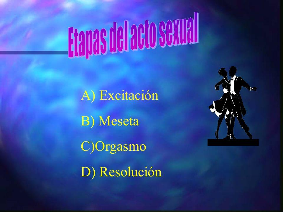 Etapas del acto sexual A) Excitación B) Meseta C)Orgasmo D) Resolución