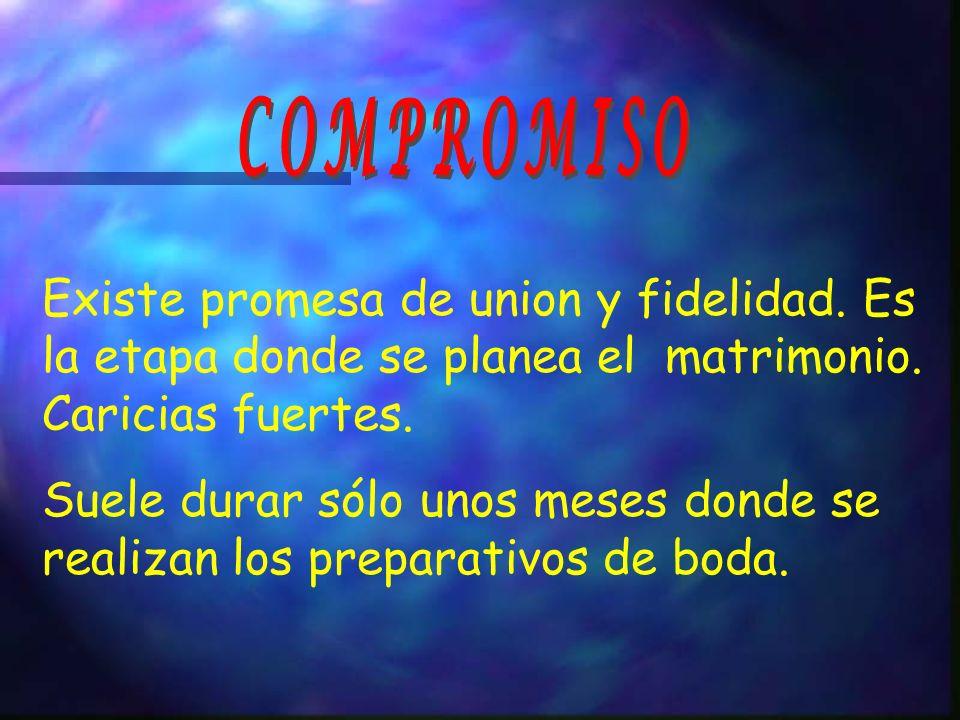 COMPROMISO Existe promesa de union y fidelidad. Es la etapa donde se planea el matrimonio. Caricias fuertes.