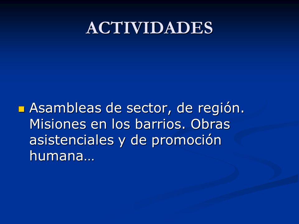 ACTIVIDADES Asambleas de sector, de región. Misiones en los barrios.
