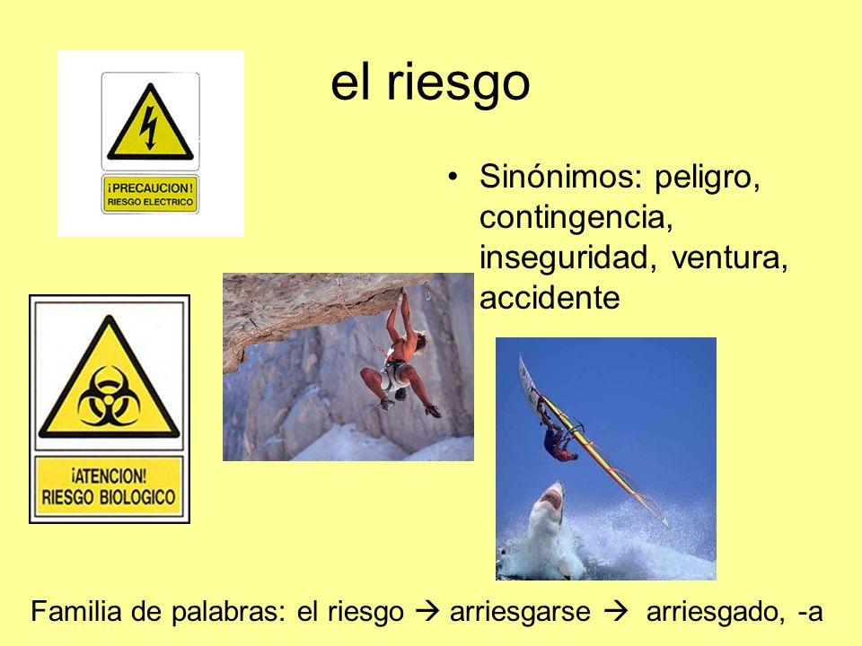 el riesgo Sinónimos: peligro, contingencia, inseguridad, ventura, accidente.