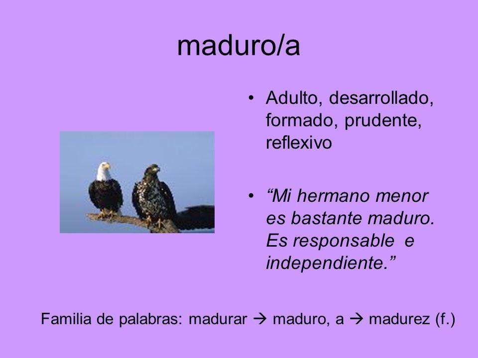 maduro/a Adulto, desarrollado, formado, prudente, reflexivo