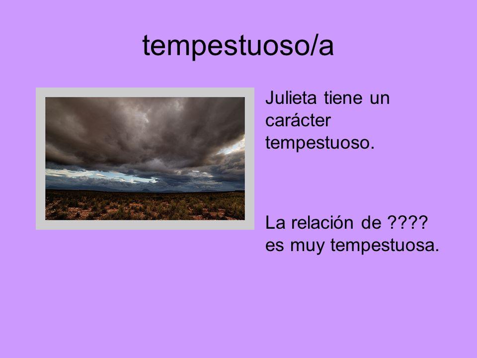 tempestuoso/a Julieta tiene un carácter tempestuoso.
