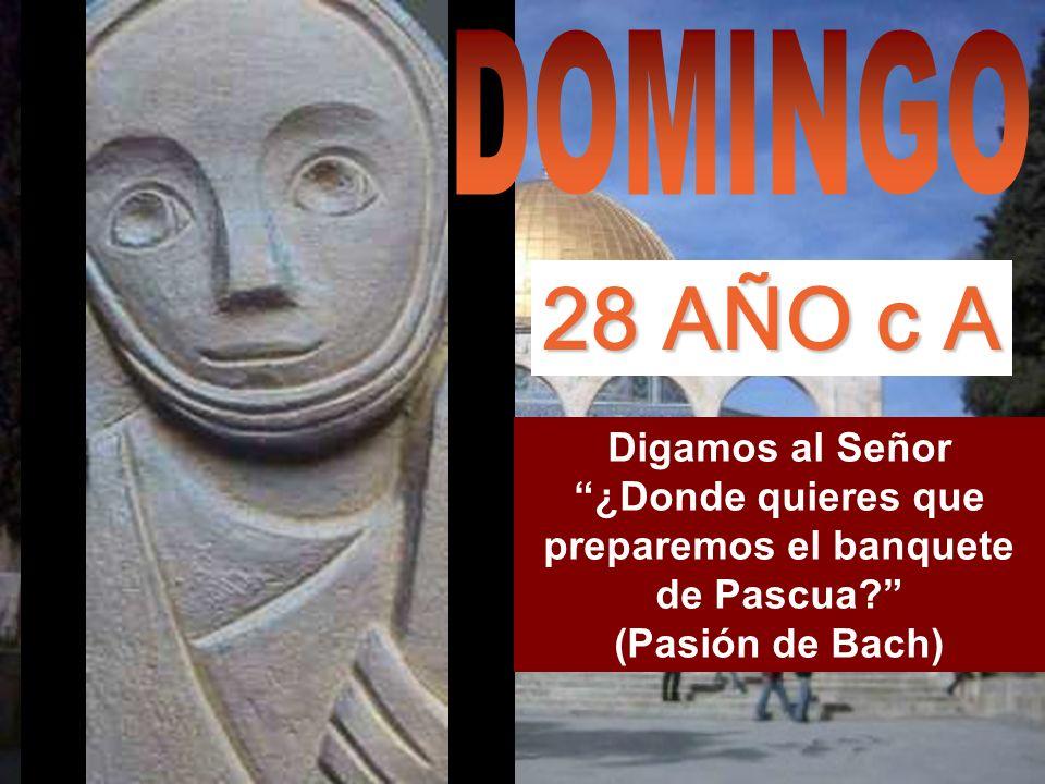 DOMINGO 28 AÑO c A.