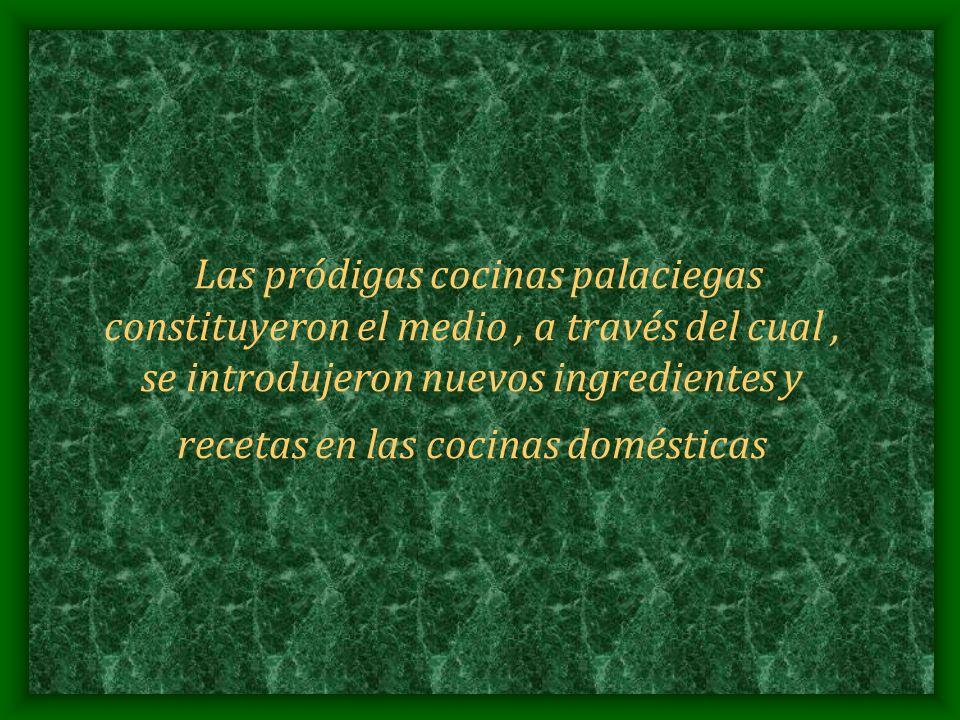 Las pródigas cocinas palaciegas constituyeron el medio , a través del cual , se introdujeron nuevos ingredientes y recetas en las cocinas domésticas
