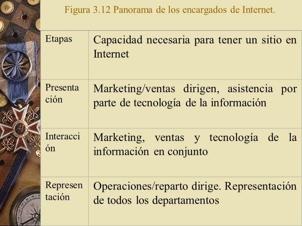 Figura 3.12 Panorama de los encargados de Internet.