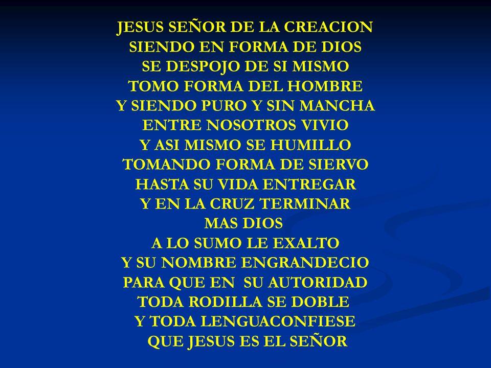 JESUS SEÑOR DE LA CREACION
