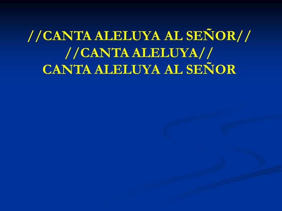 //CANTA ALELUYA AL SEÑOR//