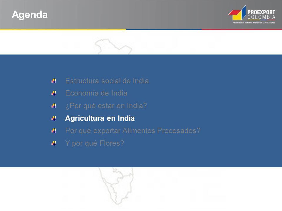 Agenda Estructura social de India Economía de India