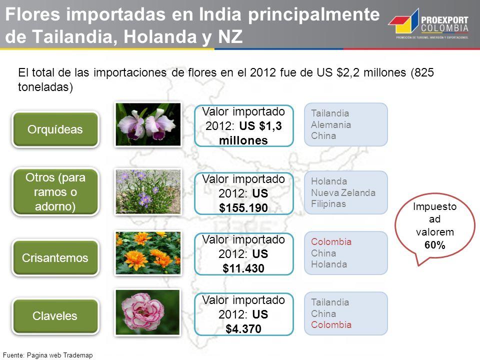 Flores importadas en India principalmente de Tailandia, Holanda y NZ