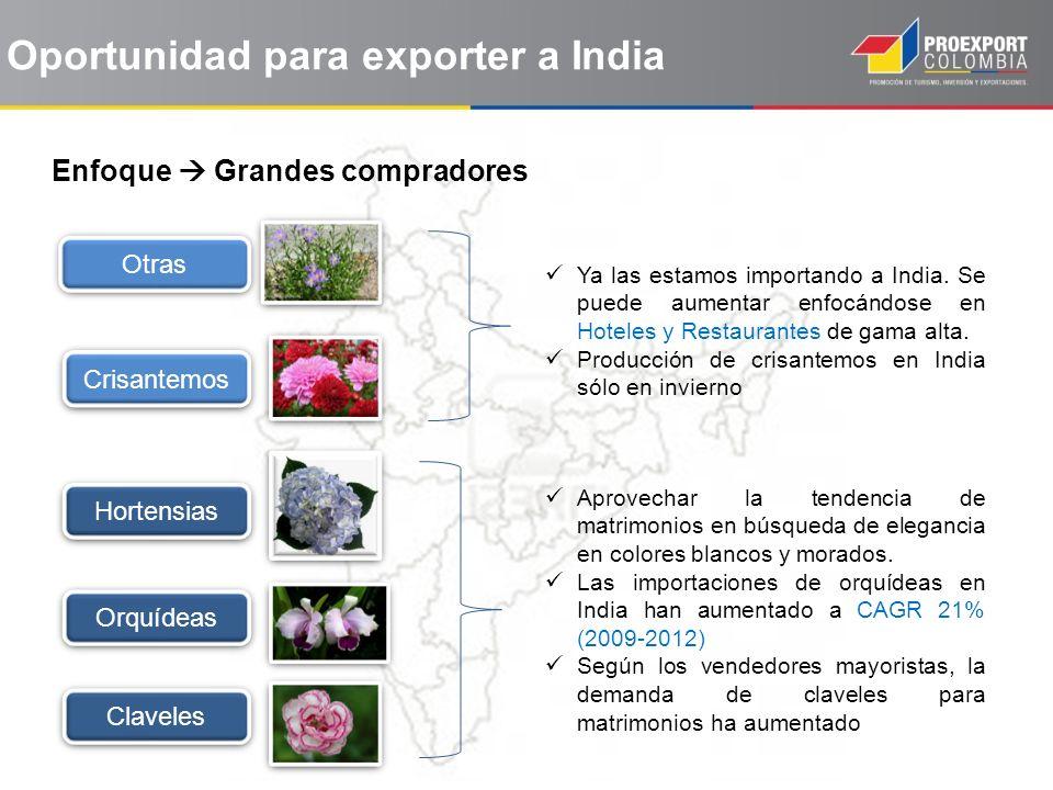 Oportunidad para exporter a India