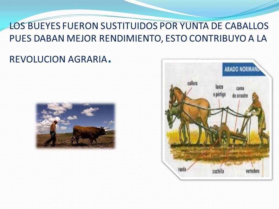 LOS BUEYES FUERON SUSTITUIDOS POR YUNTA DE CABALLOS PUES DABAN MEJOR RENDIMIENTO, ESTO CONTRIBUYO A LA REVOLUCION AGRARIA.