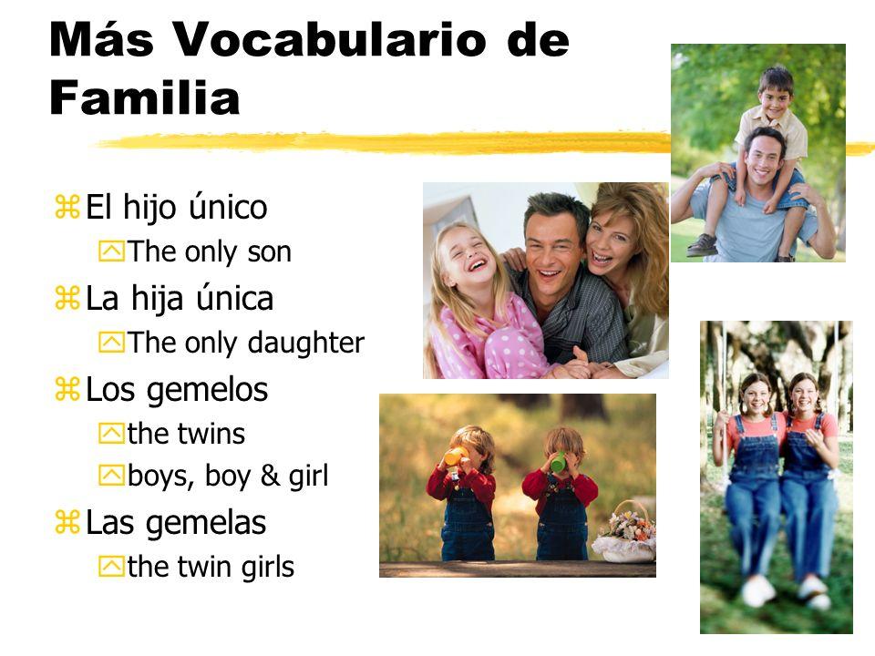 Más Vocabulario de Familia