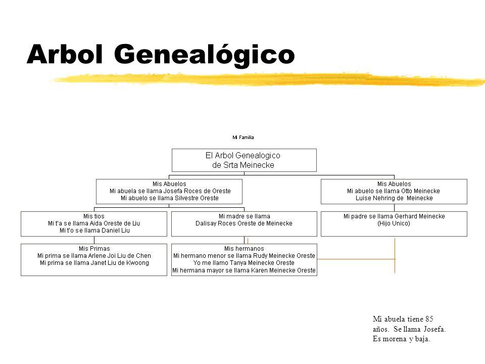 Arbol Genealógico Mi abuela tiene 85 años. Se llama Josefa. Es morena y baja.
