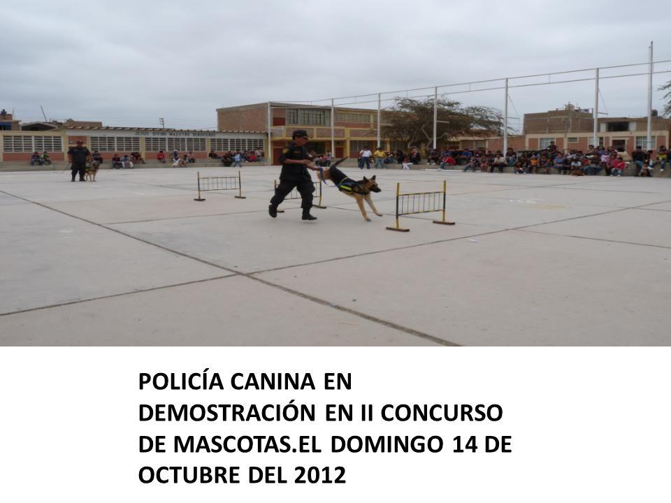 POLICÍA CANINA EN DEMOSTRACIÓN EN II CONCURSO DE MASCOTAS