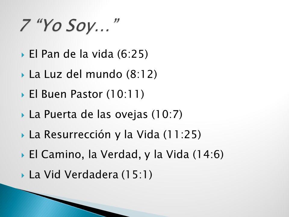 7 Yo Soy… El Pan de la vida (6:25) La Luz del mundo (8:12)