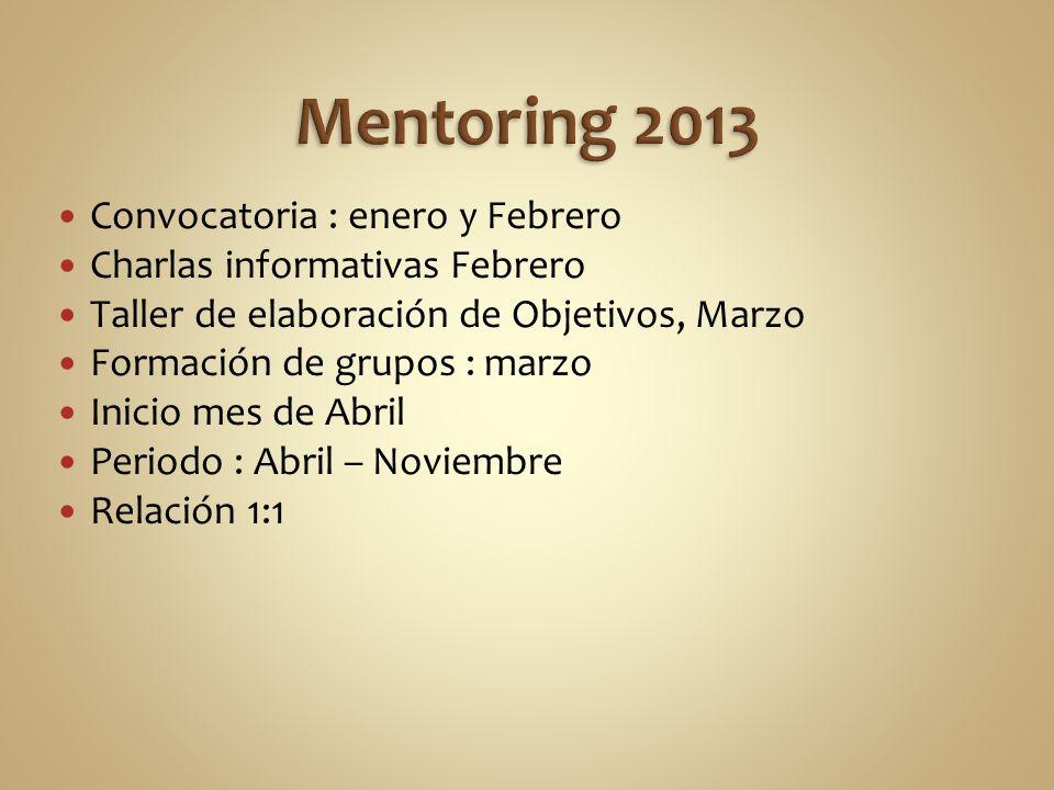 Mentoring 2013 Convocatoria : enero y Febrero