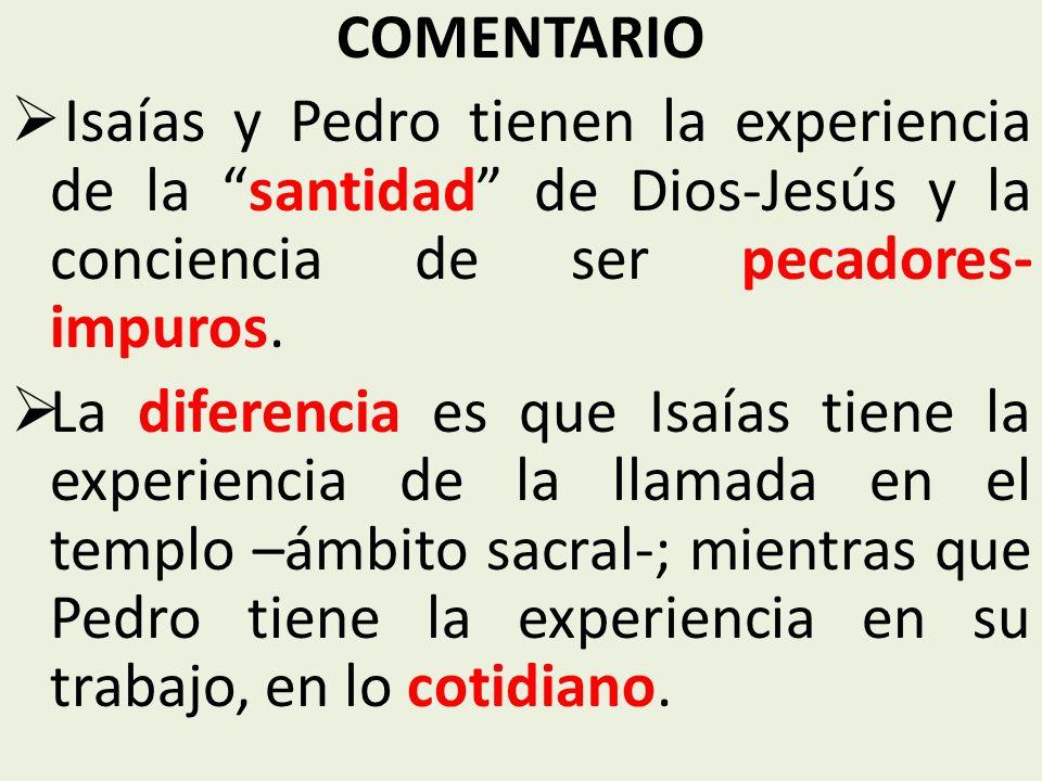 COMENTARIO Isaías y Pedro tienen la experiencia de la santidad de Dios-Jesús y la conciencia de ser pecadores-impuros.