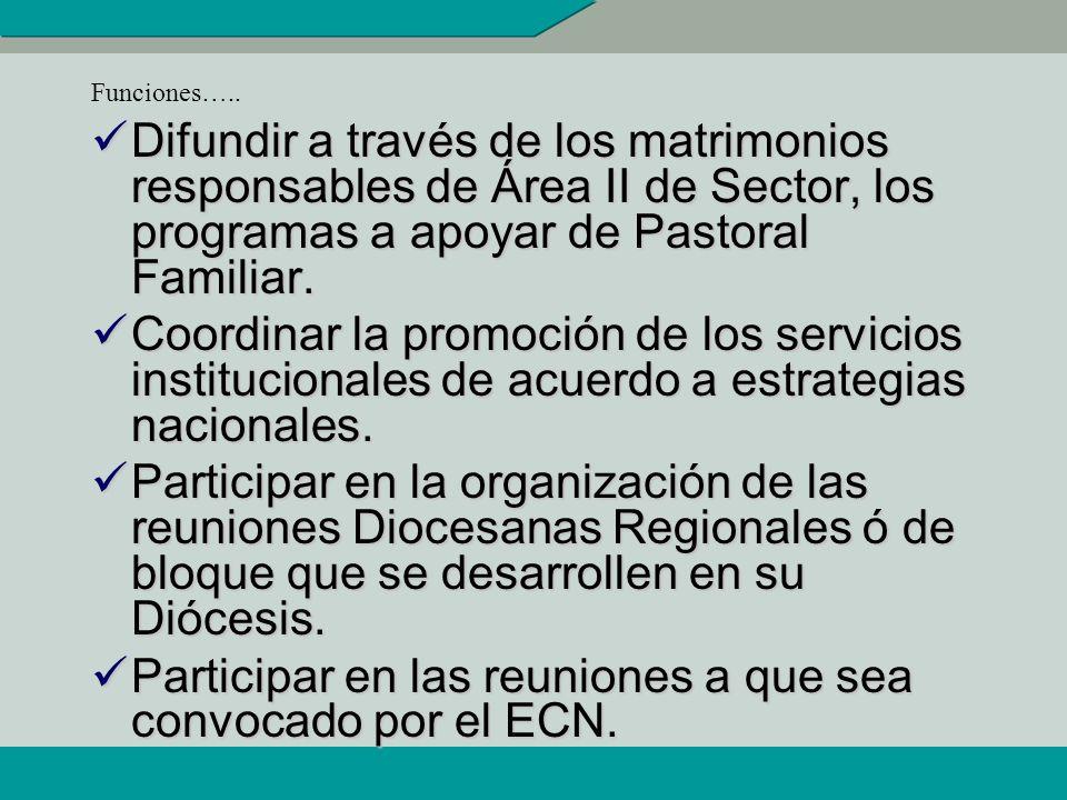 Participar en las reuniones a que sea convocado por el ECN.