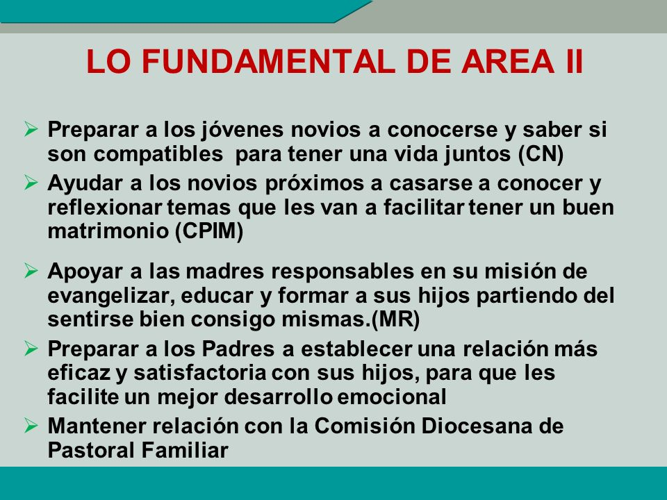 LO FUNDAMENTAL DE AREA II