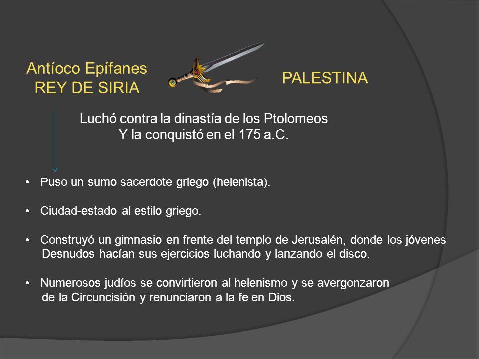 Luchó contra la dinastía de los Ptolomeos