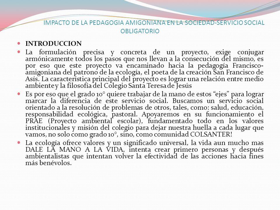 IMPACTO DE LA PEDAGOGIA AMIGONIANA EN LA SOCIEDAD-SERVICIO SOCIAL OBLIGATORIO