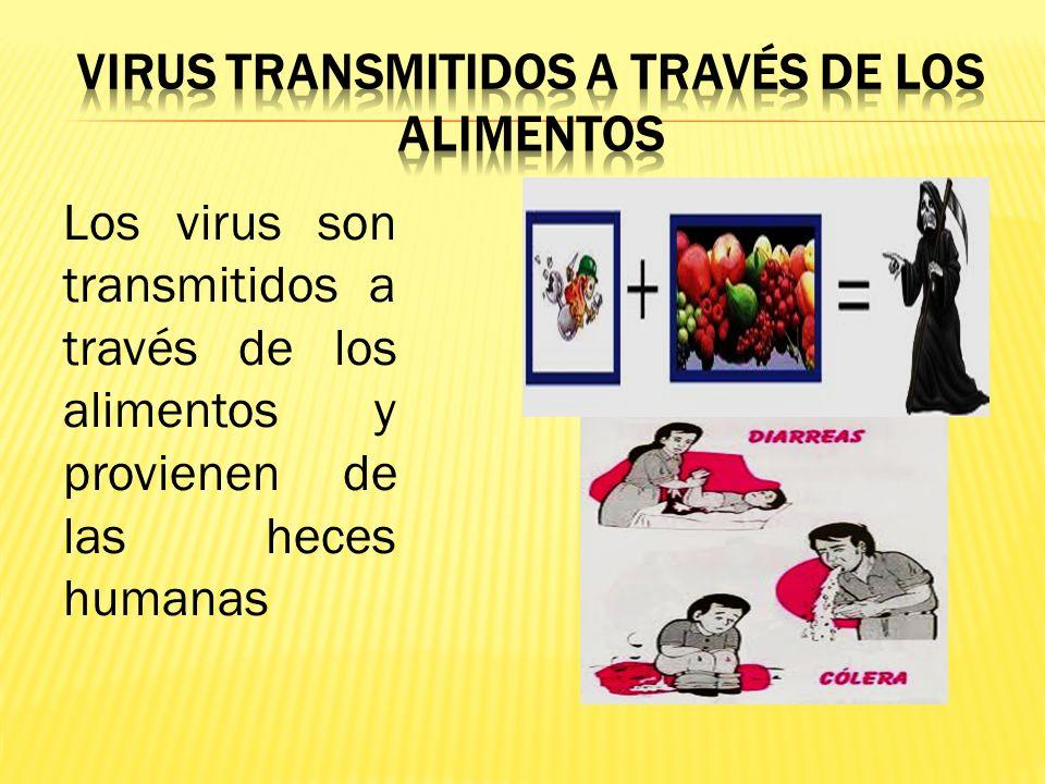 Virus transmitidos a través de los alimentos