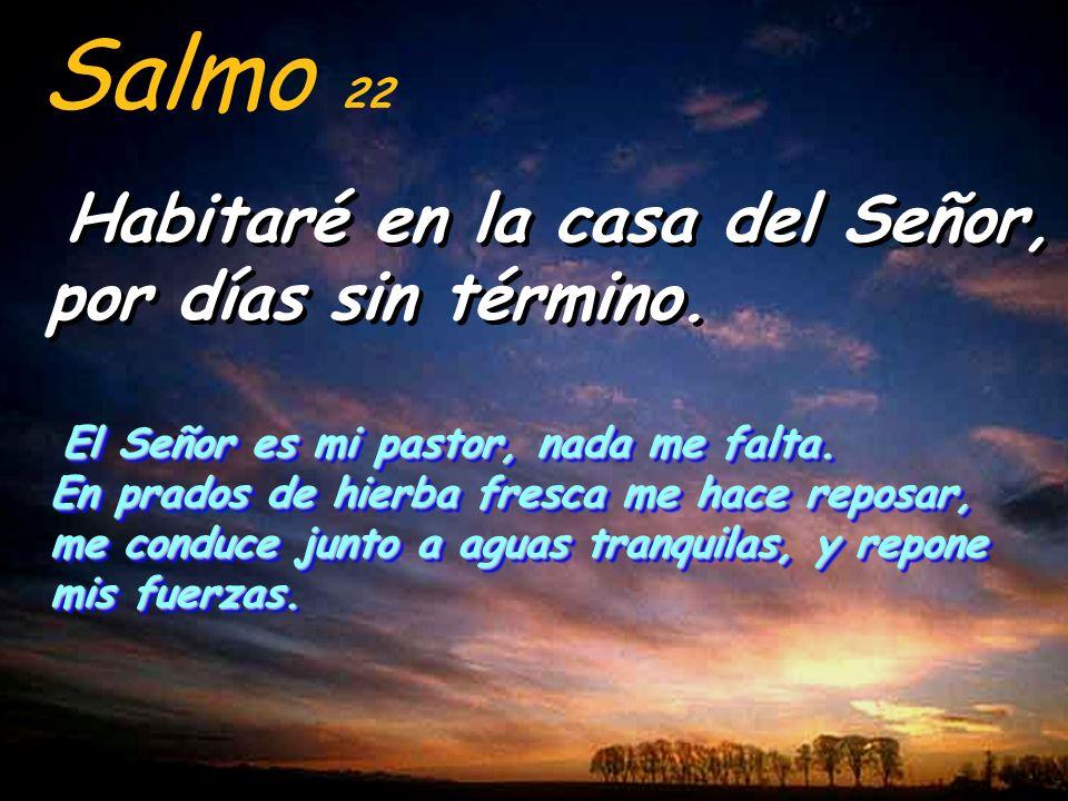 Salmo 22 Habitaré en la casa del Señor, por días sin término.