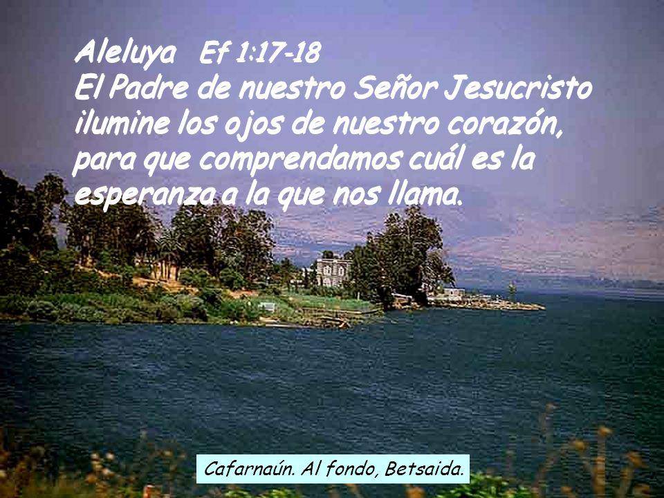 Aleluya Ef 1:17-18