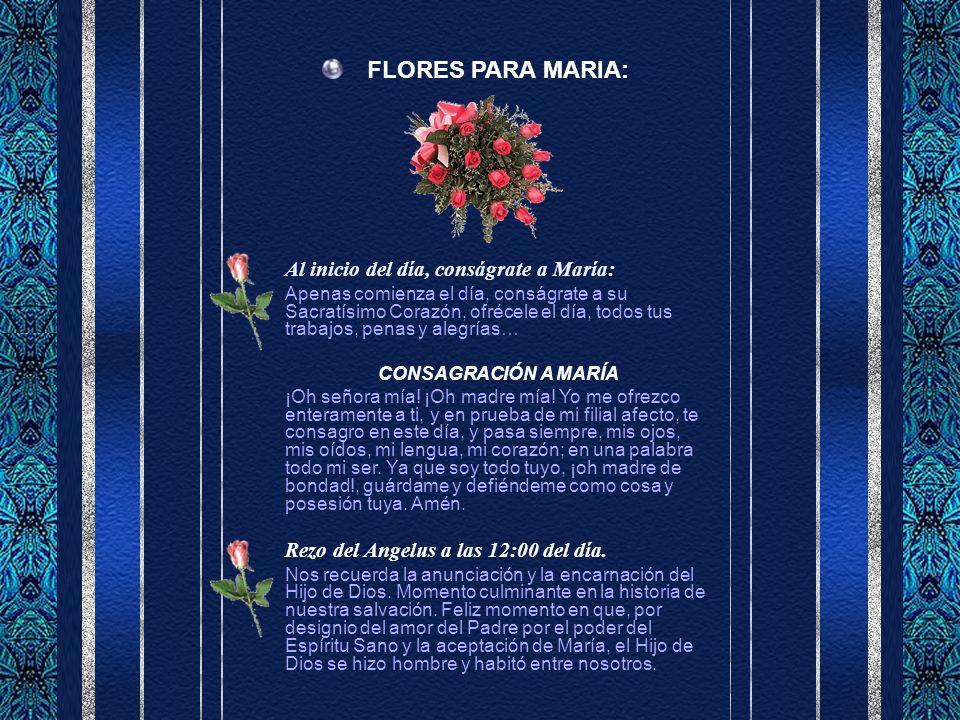 FLORES PARA MARIA: Al inicio del día, conságrate a María: