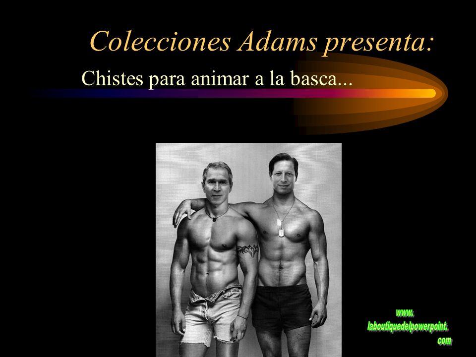 Colecciones Adams presenta: