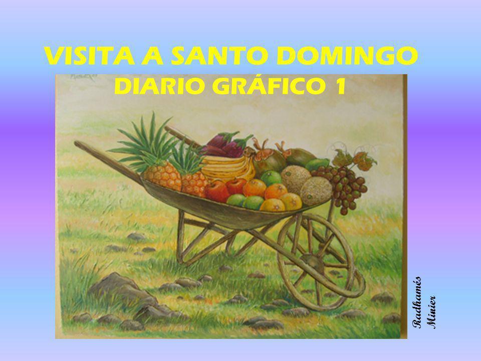 VISITA A SANTO DOMINGO DIARIO GRÁFICO 1 Radhamés Minier