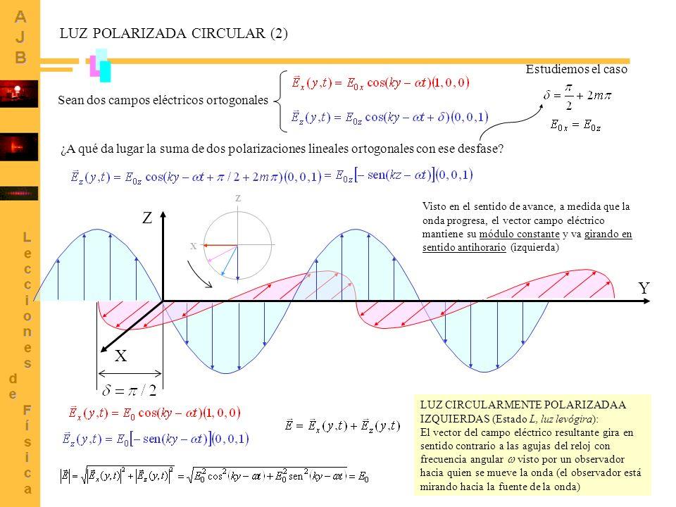 Z Y X LUZ POLARIZADA CIRCULAR (2) Estudiemos el caso