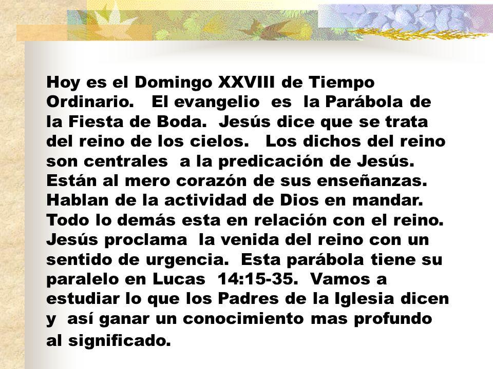 Hoy es el Domingo XXVIII de Tiempo Ordinario