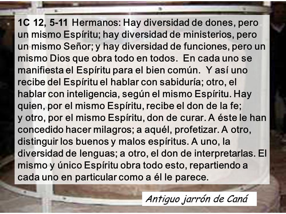 1C 12, 5-11 Hermanos: Hay diversidad de dones, pero un mismo Espíritu; hay diversidad de ministerios, pero un mismo Señor; y hay diversidad de funciones, pero un mismo Dios que obra todo en todos. En cada uno se manifiesta el Espíritu para el bien común. Y así uno recibe del Espíritu el hablar con sabiduría; otro, el hablar con inteligencia, según el mismo Espíritu. Hay quien, por el mismo Espíritu, recibe el don de la fe; y otro, por el mismo Espíritu, don de curar. A éste le han concedido hacer milagros; a aquél, profetizar. A otro, distinguir los buenos y malos espíritus. A uno, la diversidad de lenguas; a otro, el don de interpretarlas. El mismo y único Espíritu obra todo esto, repartiendo a cada uno en particular como a él le parece.
