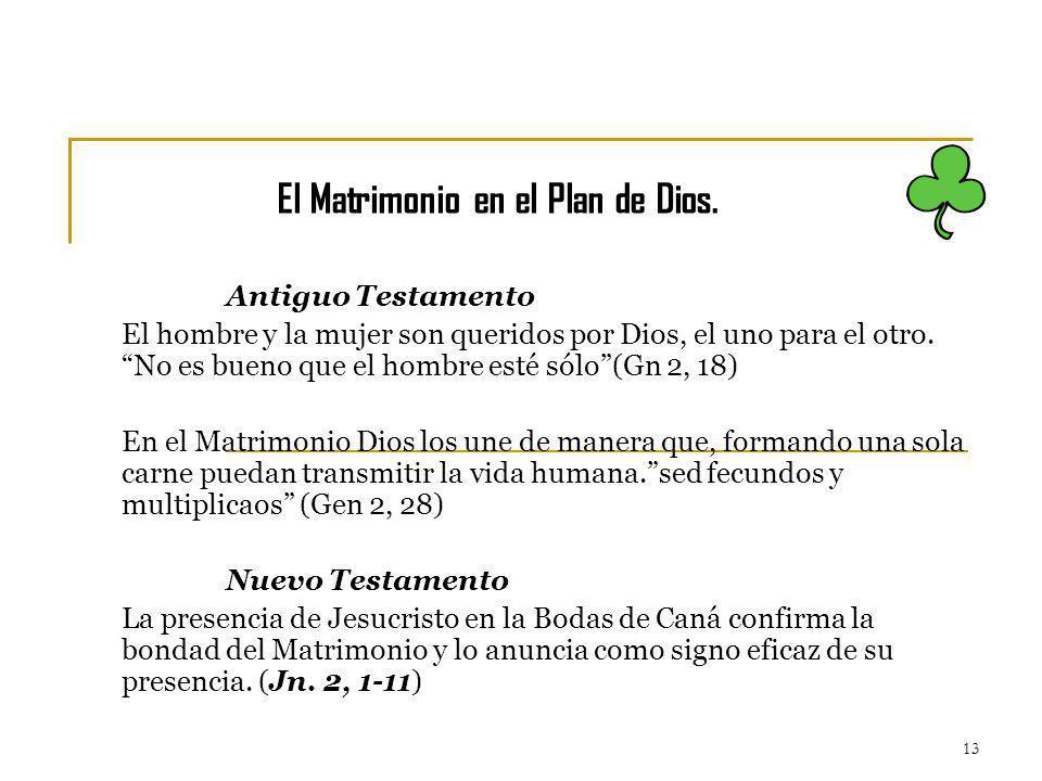 El Matrimonio en el Plan de Dios.